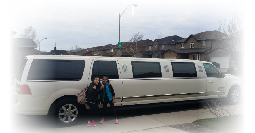Hamilton Limo to Buffalo Airport